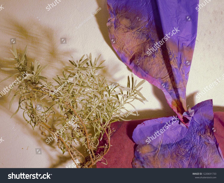 Aromatherapy Wallpaper Blue Eletric Paper Lavender Stock Photo Edit Now 1220691733
