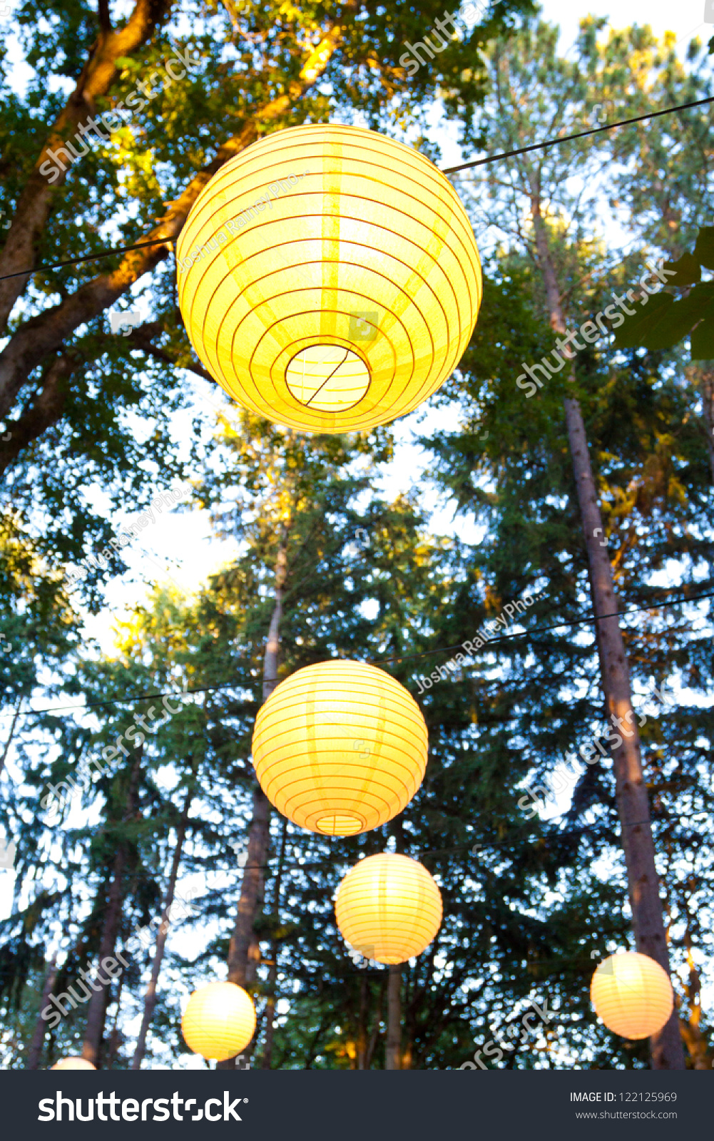 Yellow Wedding Decorations Hang Trees Wedding Stock Photo (Edit Now ...