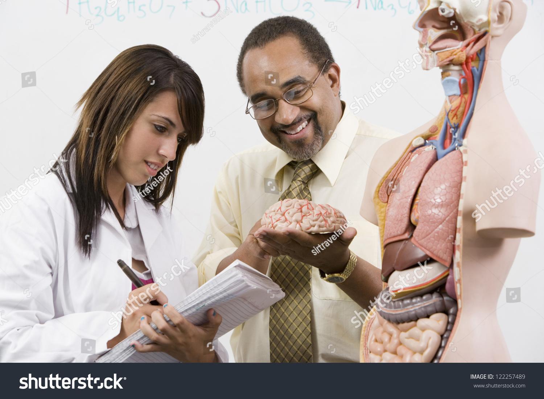Adult organ student