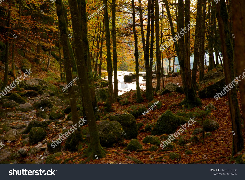 foto de Nature Paysage Automne Montagne Jura Stock Photo (Edit Now) 1224343720