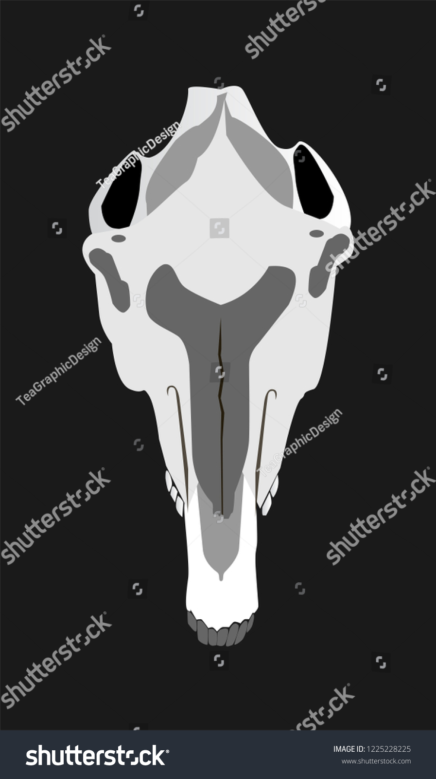 Horse Skull Head Abstract Background Illustration Stock Vector