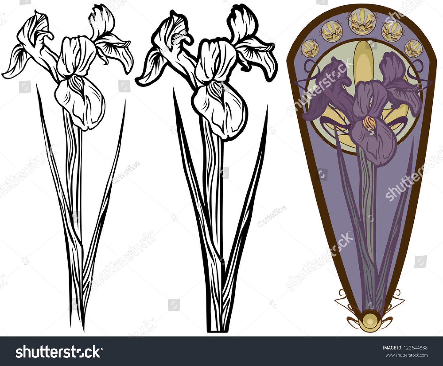 Iris flower illustration black and white and color versions vector