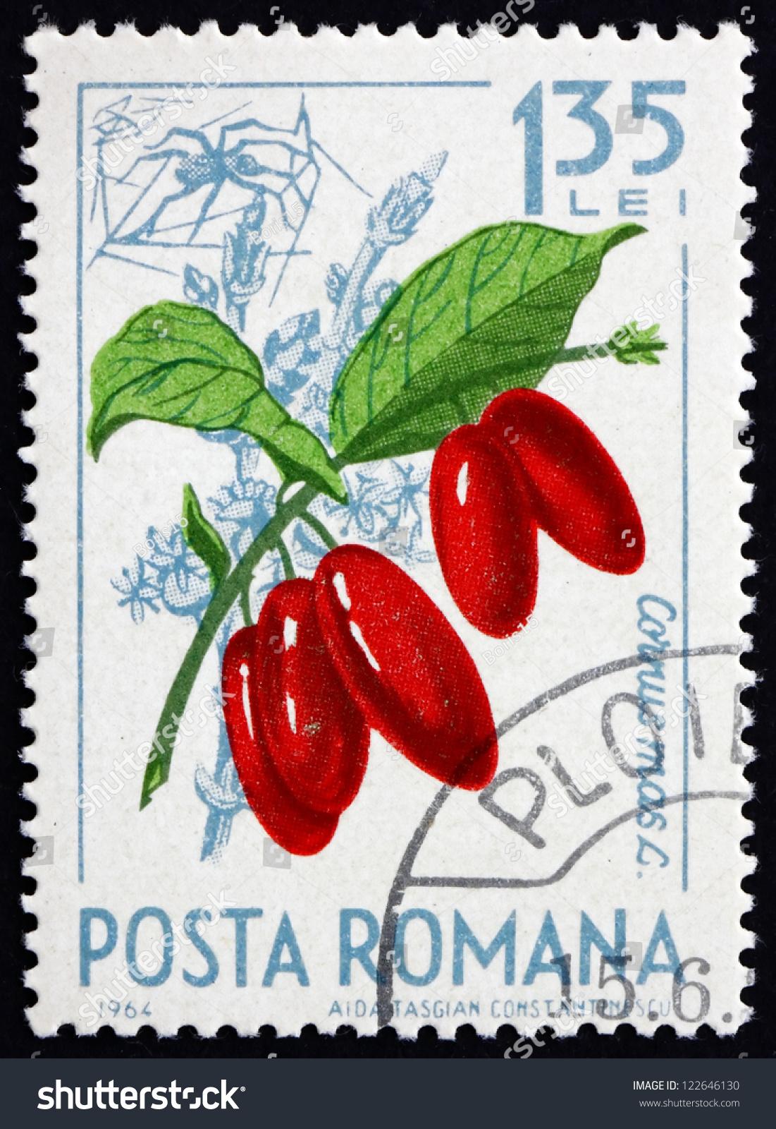 Romania circa 1964 a stamp printed in the romania shows cornelian cherries cornus mas - Romanian cherry tree varieties ...