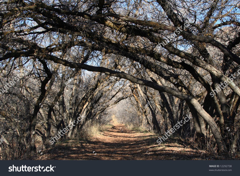 "coleridge limetree bower my prison analysis Kubla khan and this lime-tree bower  (kk) and ""this lime-tree bower my prison  we know where in the world that bower was and where coleridge."