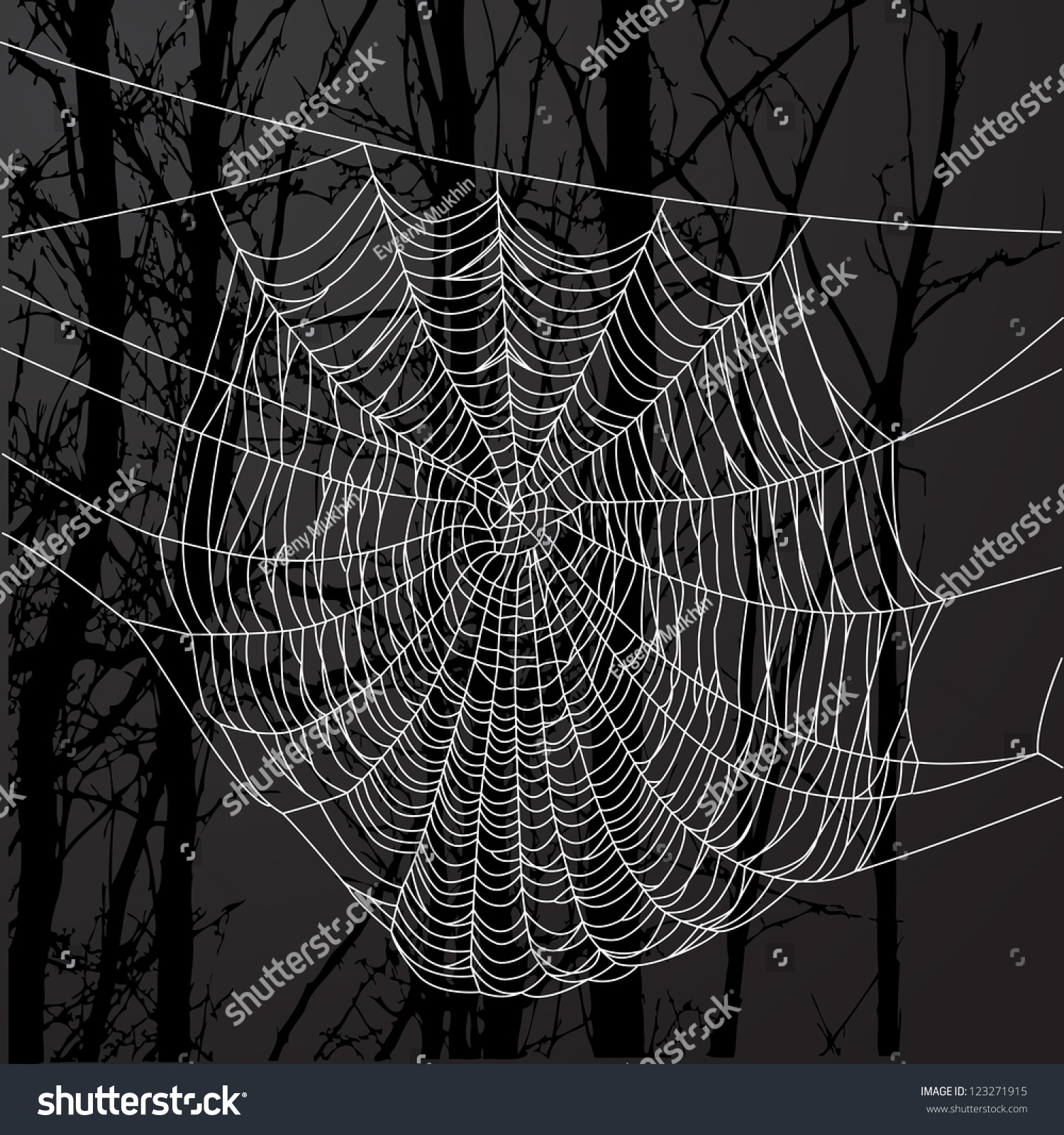 Realistic spider web drawings