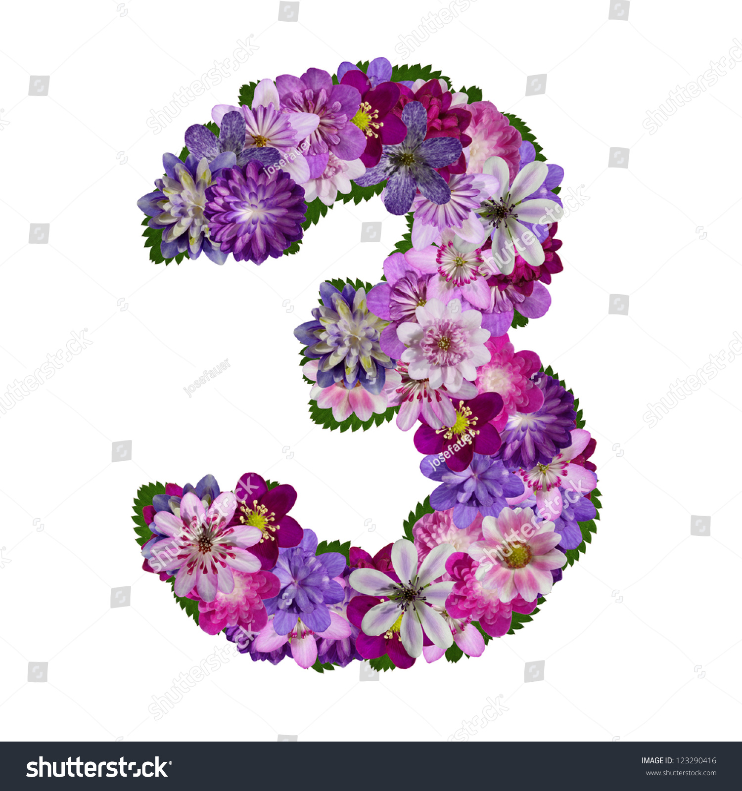 Alphabet Made Of Flower Number 3 Stock Photo 123290416   Shutterstock