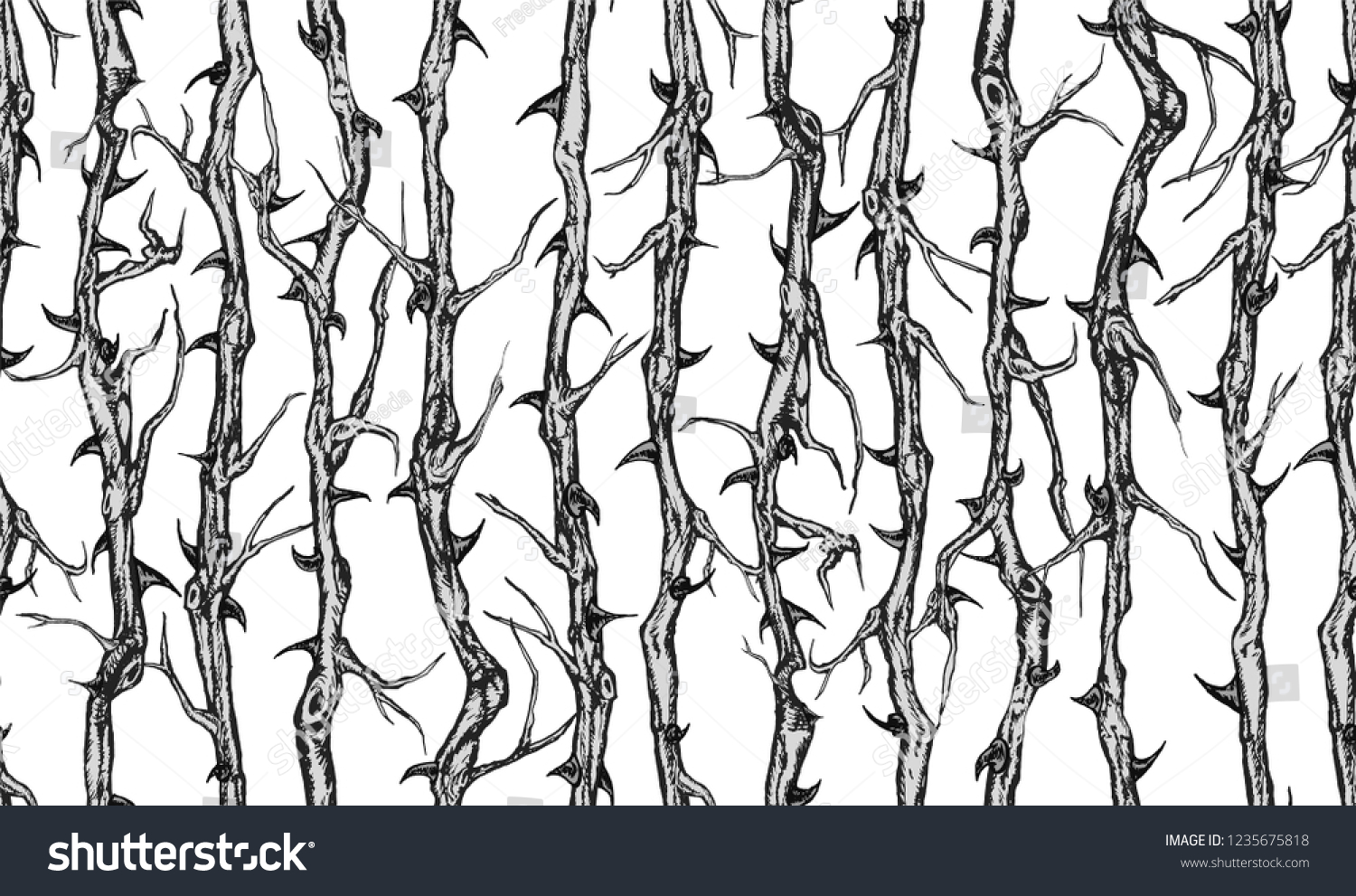 Hand drawn vector seamless pattern of briar patch with stems and thorns.