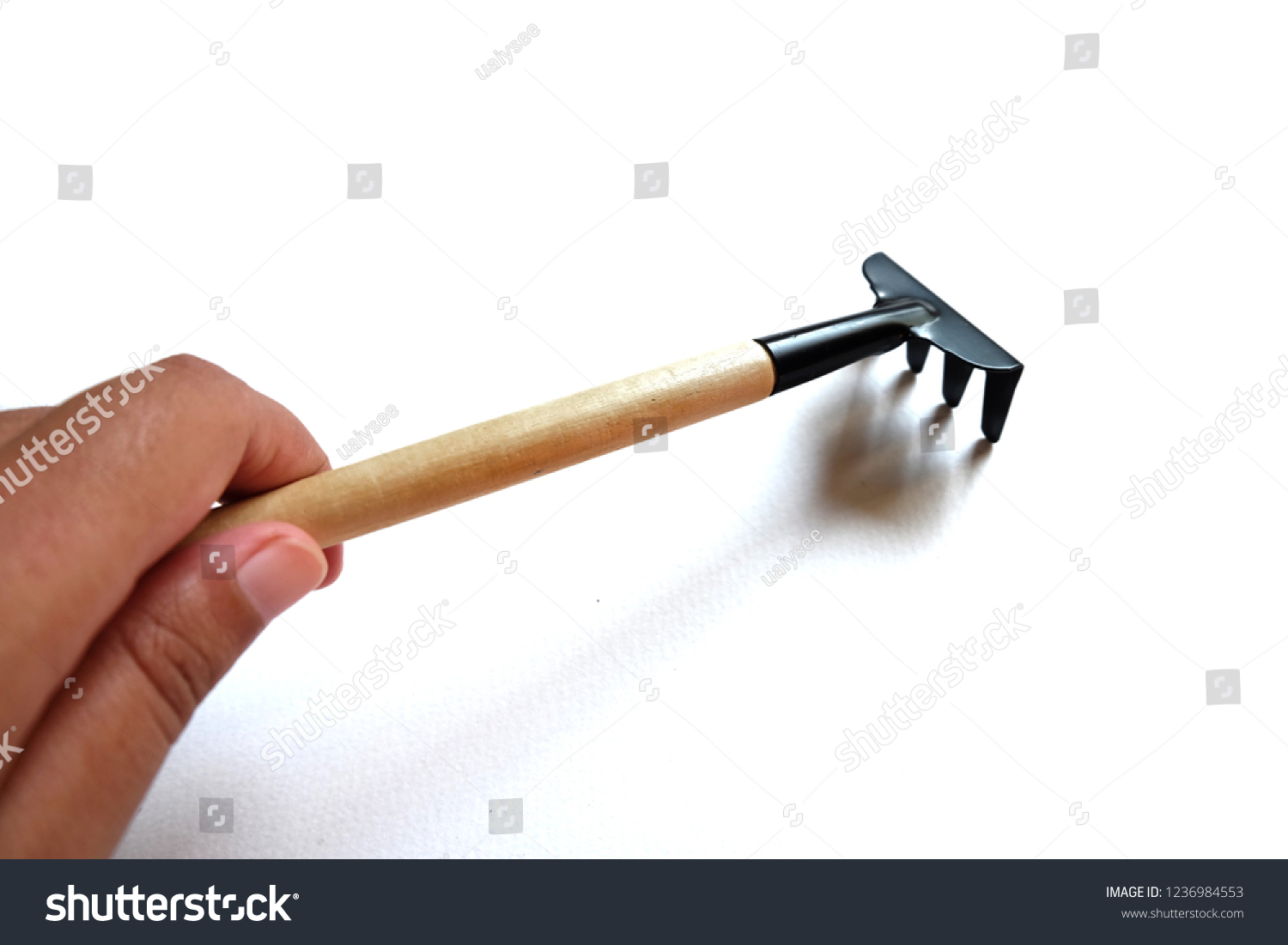 Hand Holding Rake Cultivating Landtool Horticulture Stock
