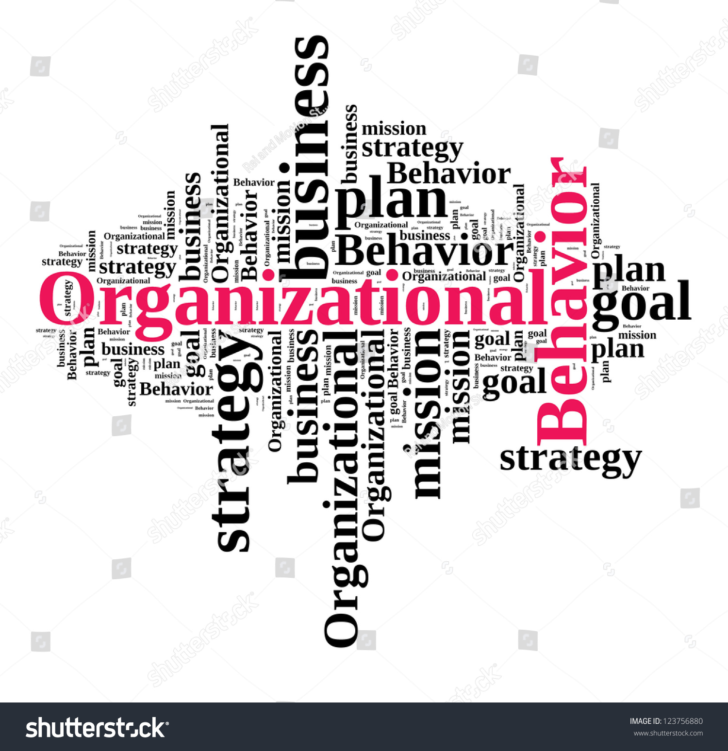Dissertation Organizational Behavior