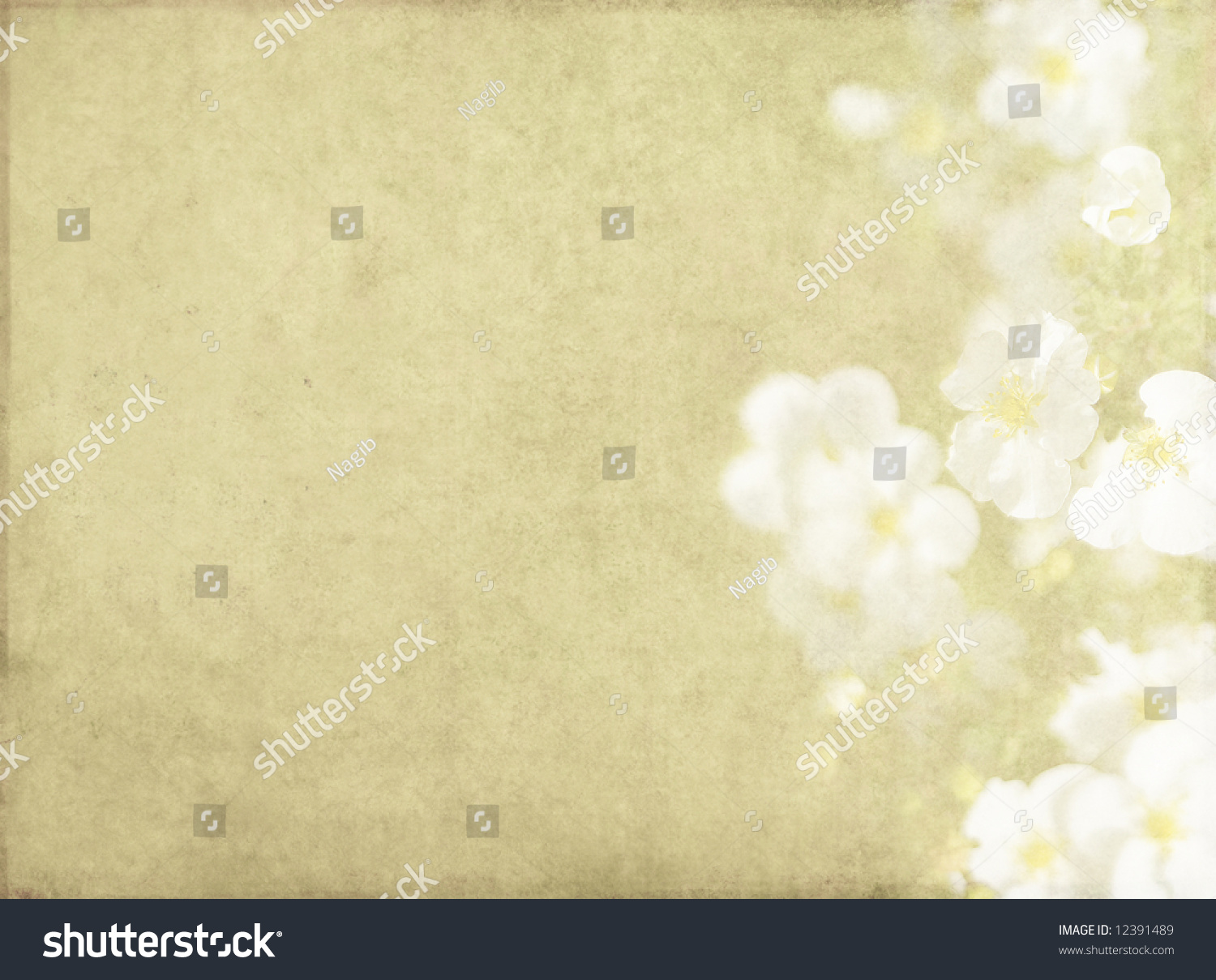 Lovely Brown Background Image With Interesting Texture ... - photo#23