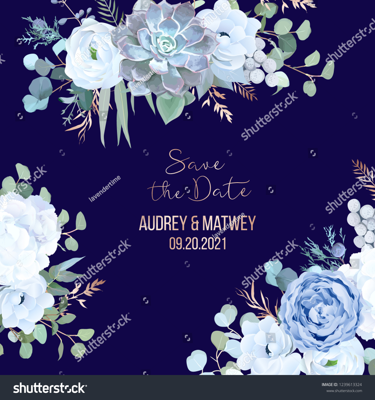 Dusty Blue Rose Echeveria Succulent Hydrangea Stock Vector Royalty Free 1239613324