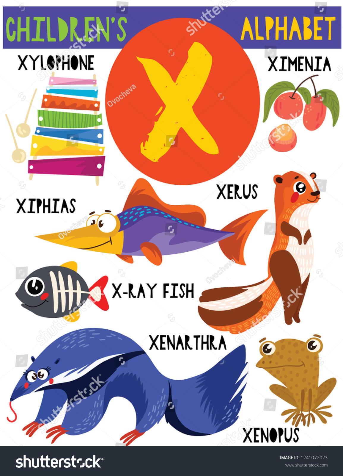 Letter X Cute Childrens Alphabet Adorable Animals Stock Vector