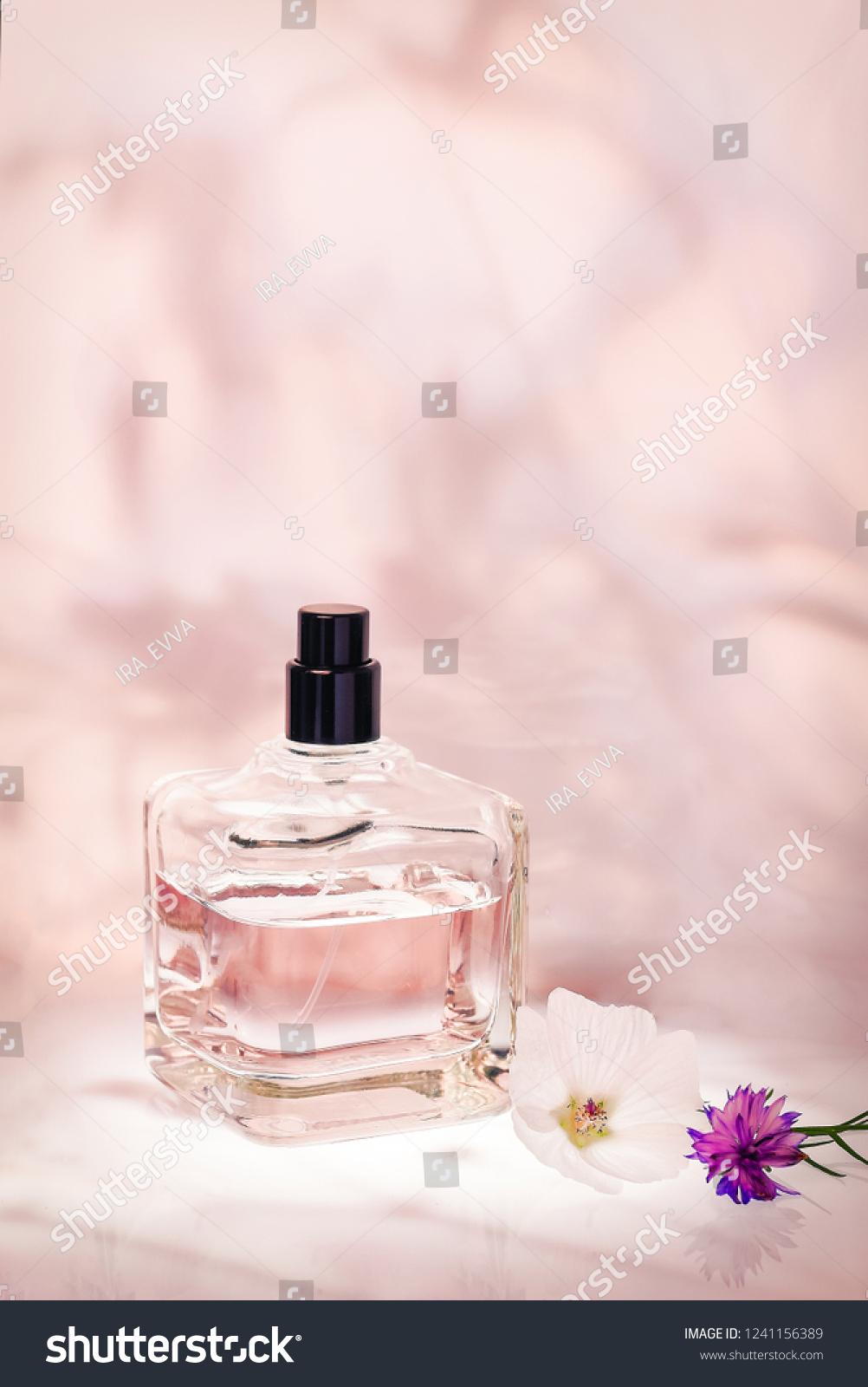 Perfume Bottle Plants On Light Pink Stock Photo Edit Now 1241156389