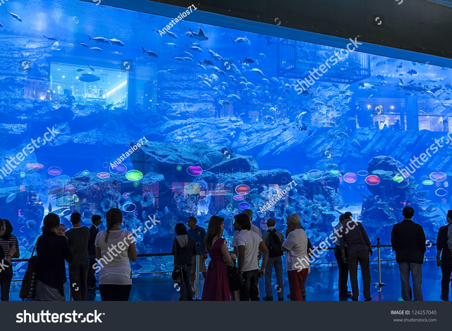 Fish aquarium in uae - Dubai Uae Jan 4 Aquarium In Dubai Mall World S Largest Shopping Mall