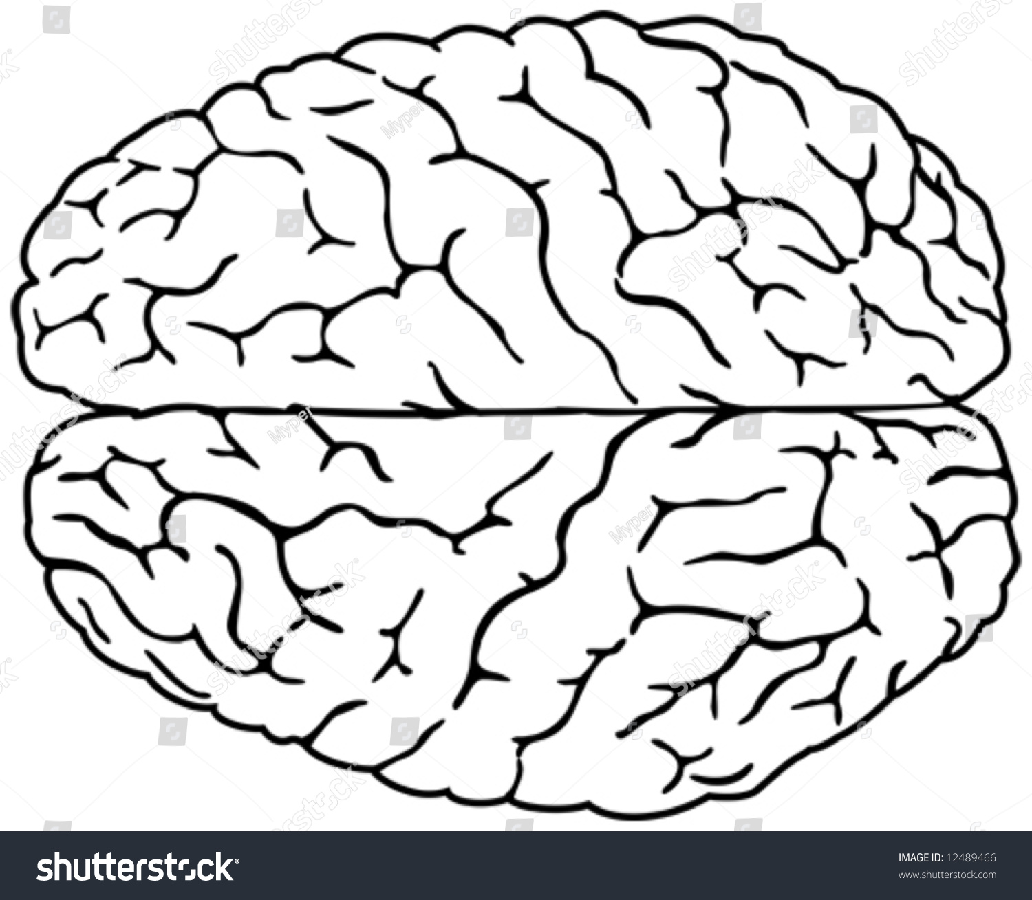Line Drawing Brain : Simple brain drawing stock vector shutterstock