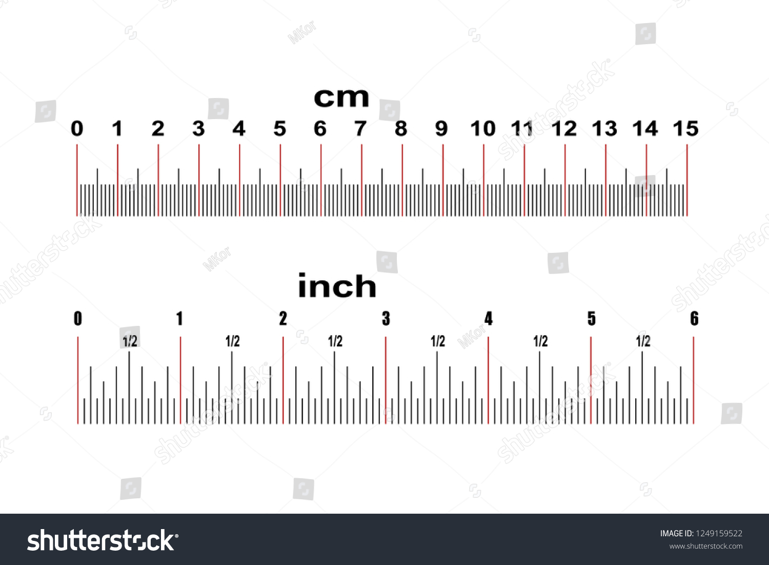 Ruler 15 Centimeters Ruler 6 Inches Stock Vector Royalty Free
