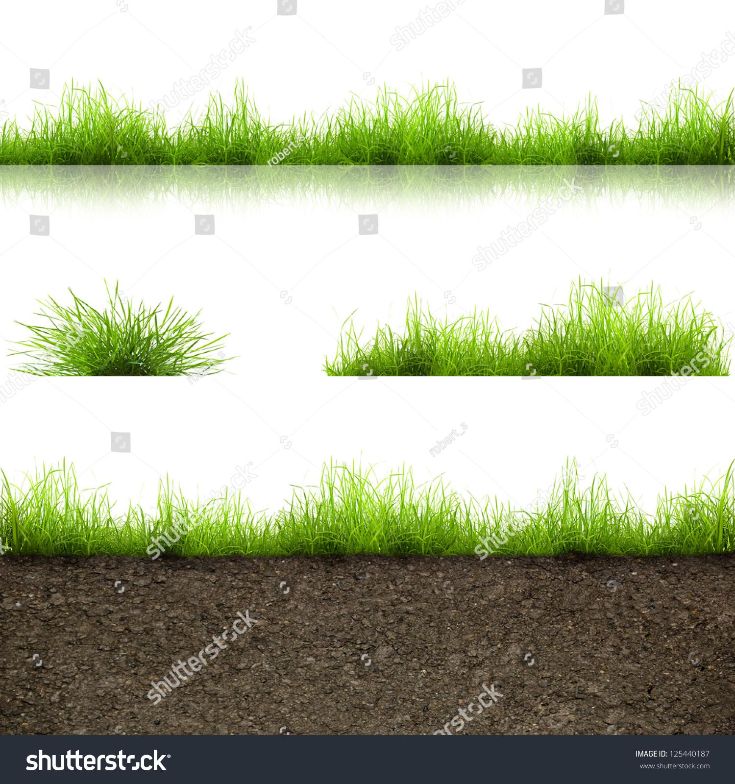 Green Grass Soil Isolated On White Stock Photo 125440187