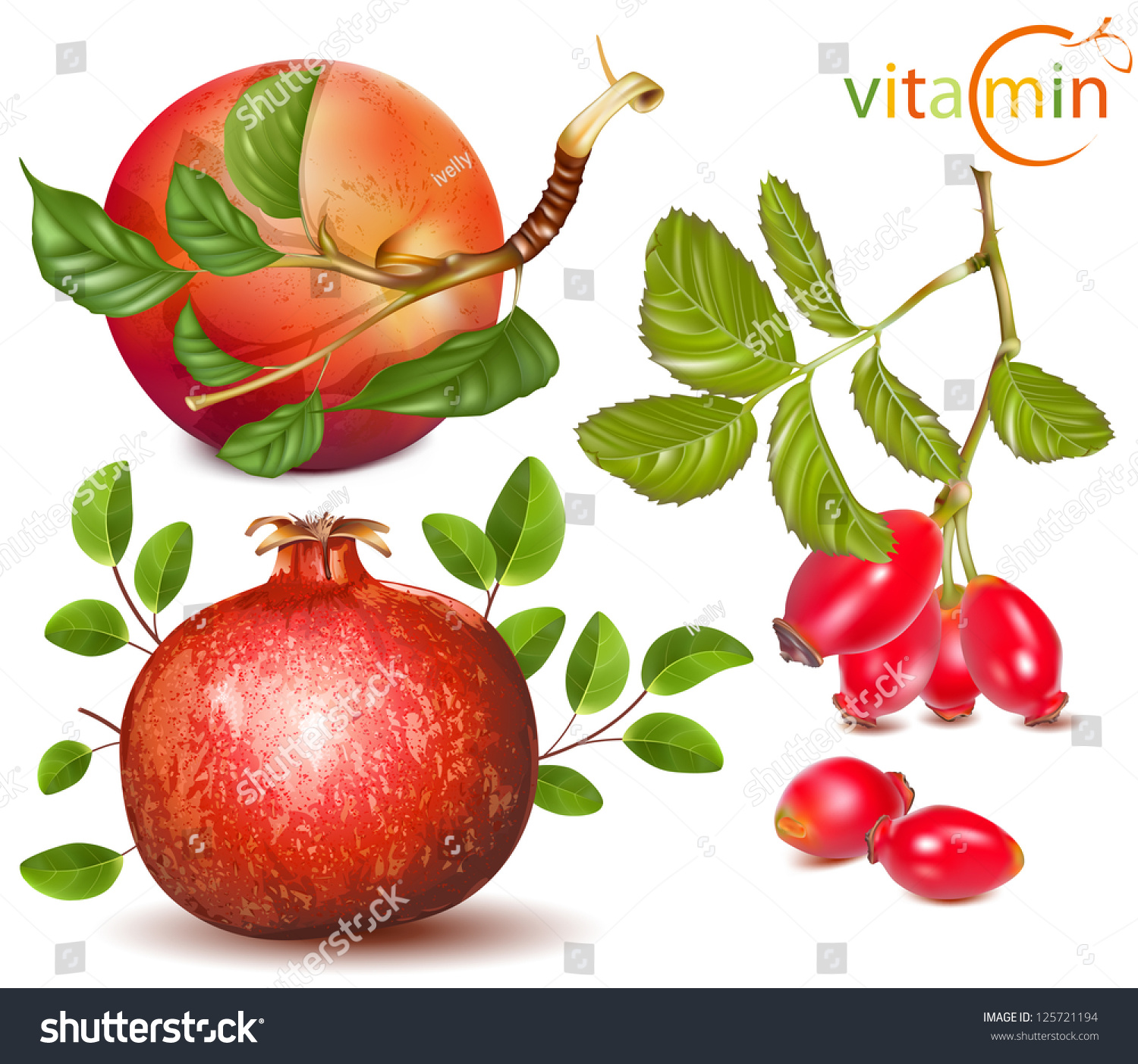 Vector Vitamin C Included Fruits Apples Stock Vector 125721194 ...