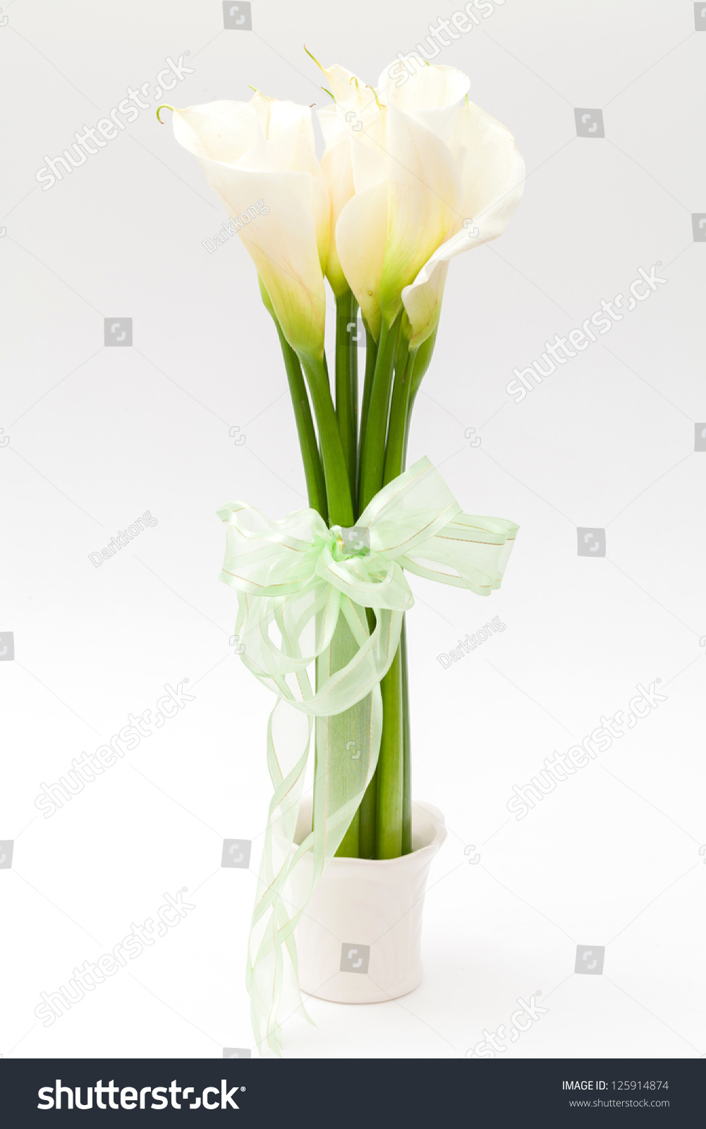 White calla lily vase stock photo 125914874 shutterstock white calla lily in vase reviewsmspy