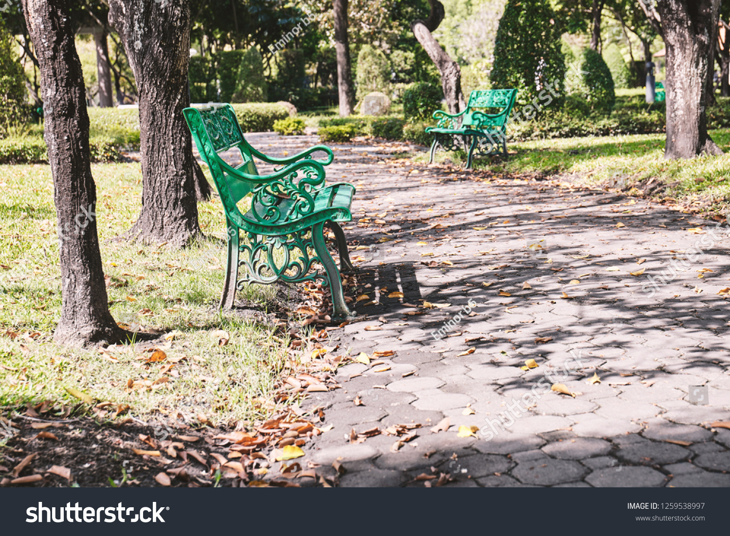 Empty old green bench in the garden with warm sunlight. Relaxation corner, chairs in the city park. #1259538997