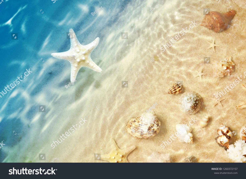 Starfish 10x12 FT Backdrop Photographers,Scallop Seashell and Starfish Close Up Sandy Beach Idyllic Ocean Backdrop Design Background for Baby Birthday Party Wedding Vinyl Studio Props Photography
