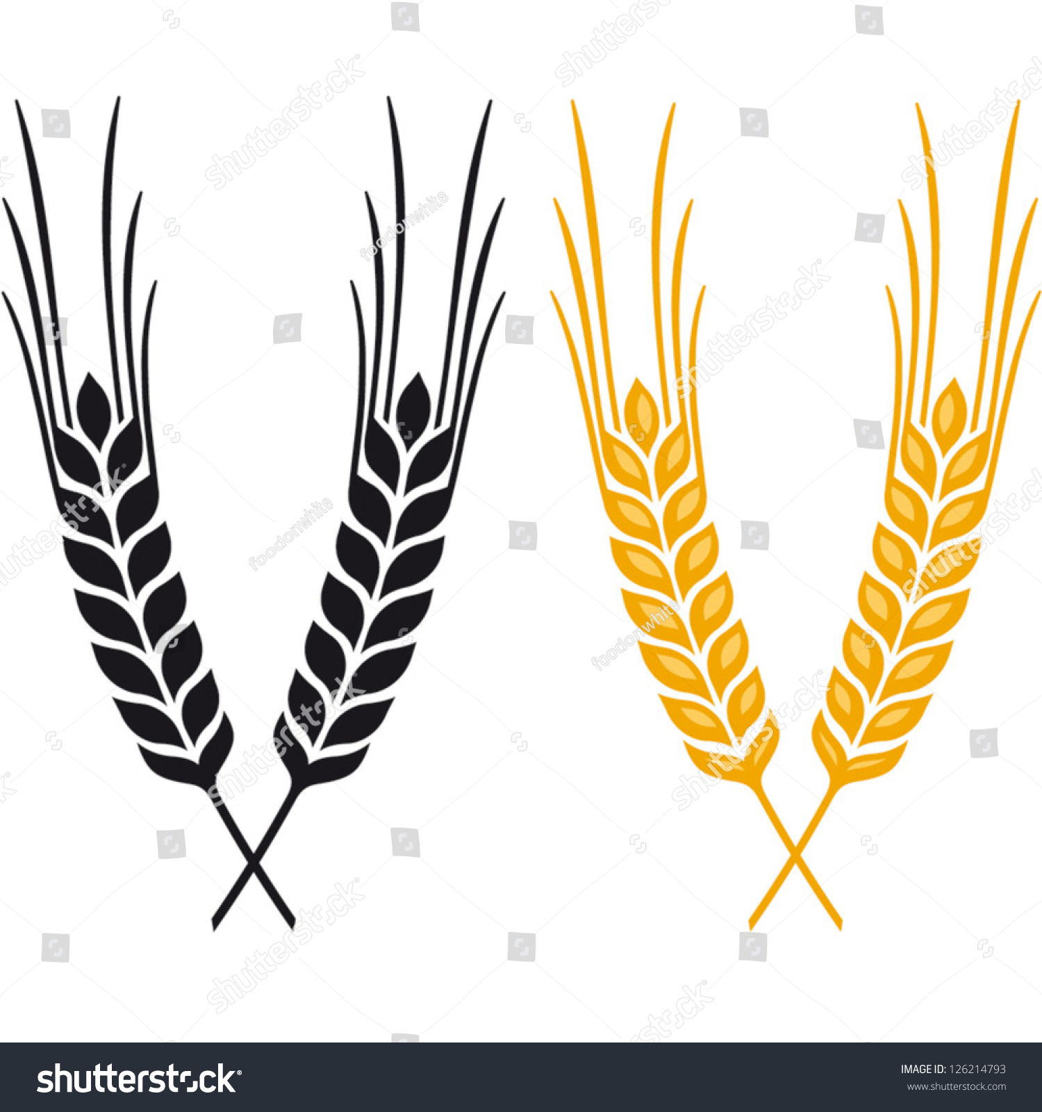 ears wheat barley rye vector visual stock vector 126214793 rh shutterstock com wheat barley vector wheat barley vector