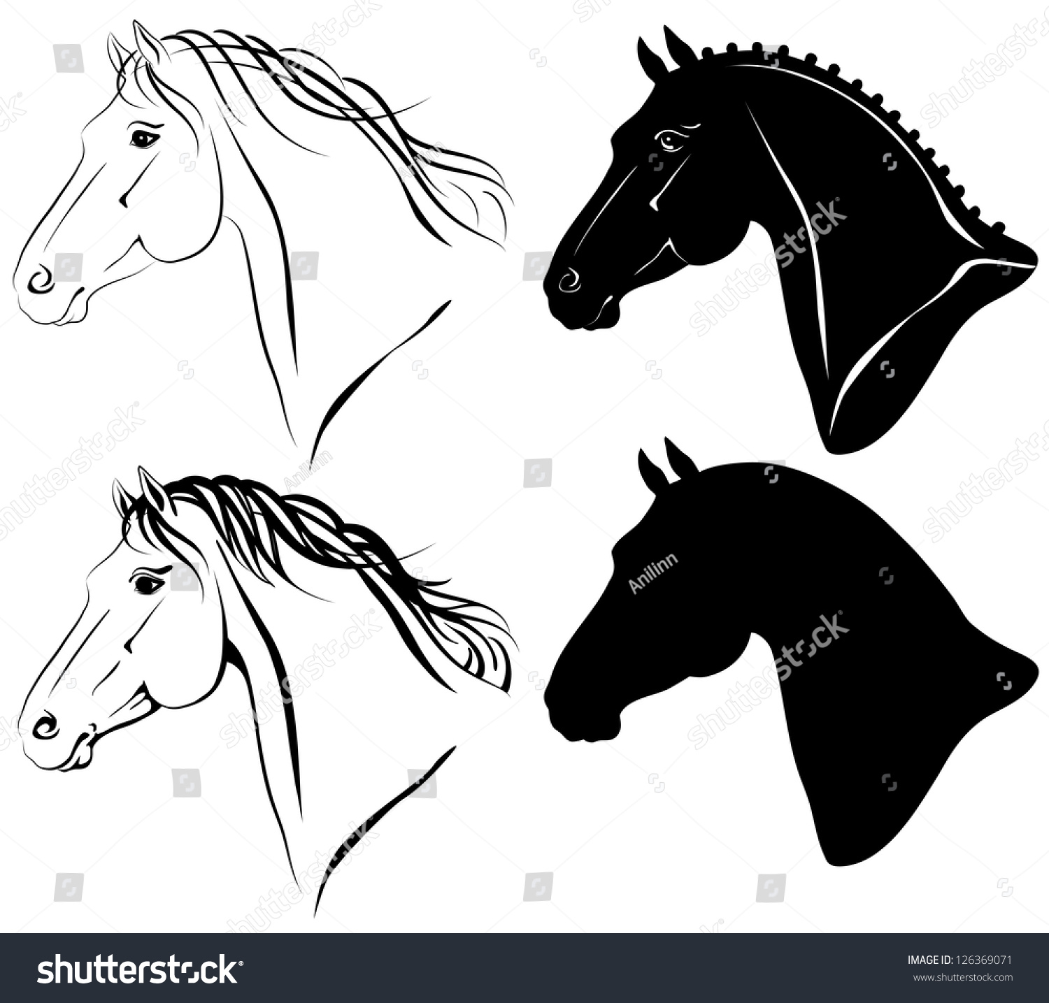 Clip Art Horse Head Clip Art vector illustration horse head clipart set stock 126369071 of clip art set