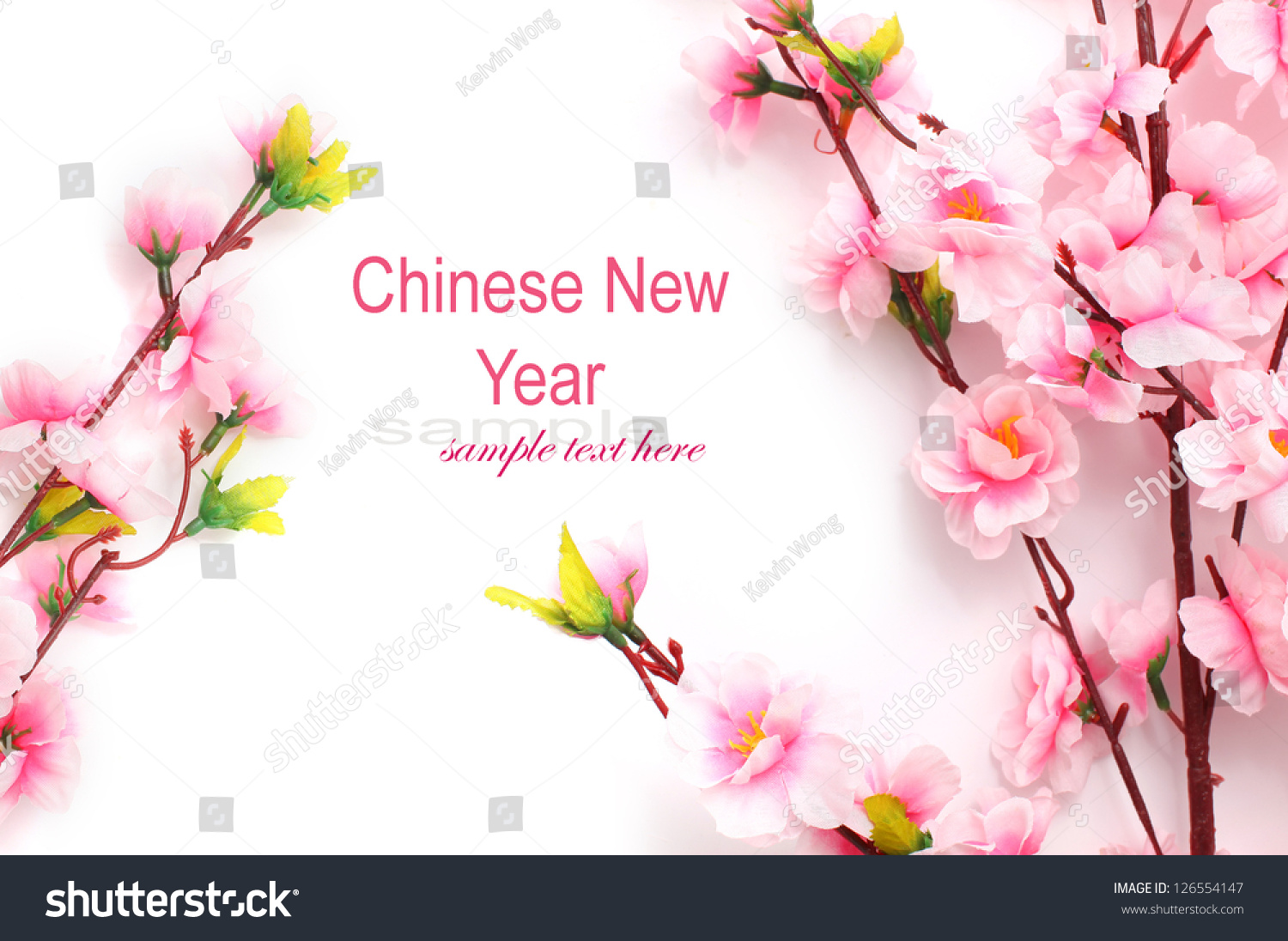 Plum flowers blossom on white background stock photo - Flowers for chinese new year ...