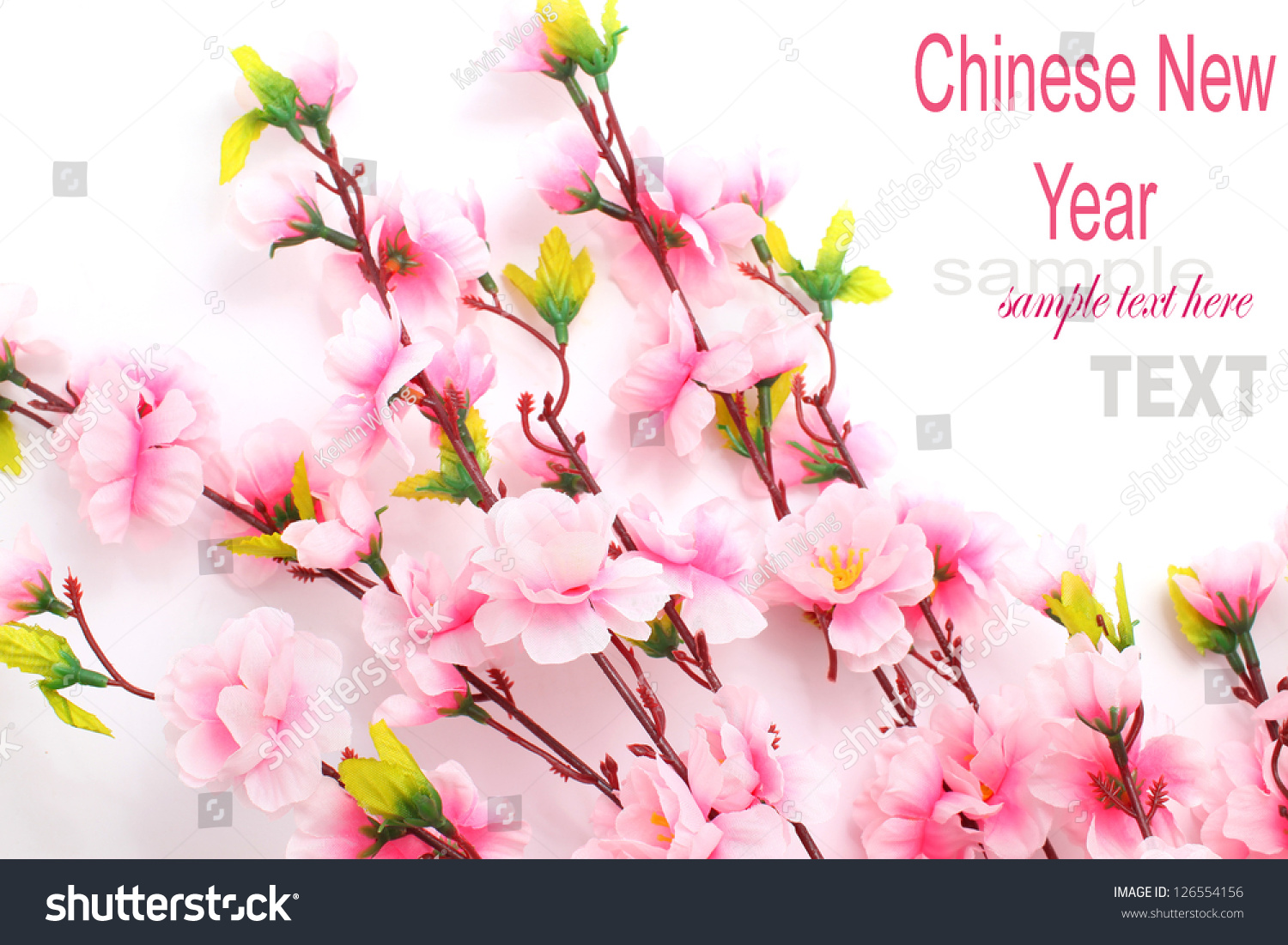 Plum flowers blossom on white background good for chinese - Flowers for chinese new year ...