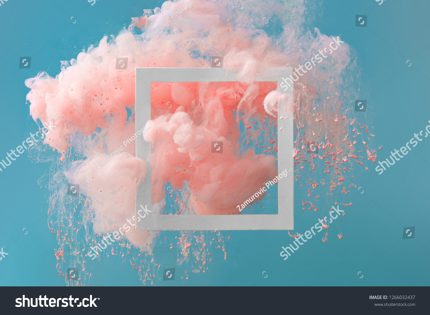 Abstract pastel coral pink color paint with pastel blue background. Fluid creative concept composition with copy space. Minimal natural luxury. #1266032437
