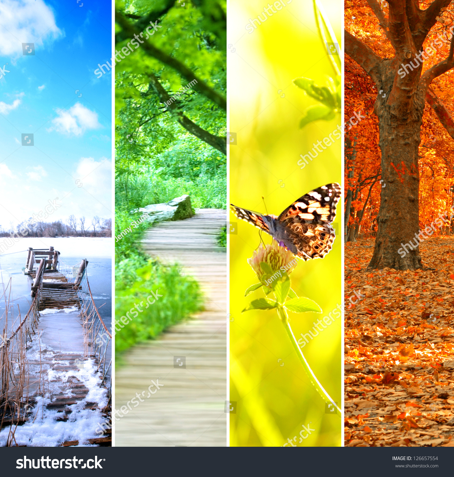 25  best ideas about Nature collage on Pinterest | Natural printed ...