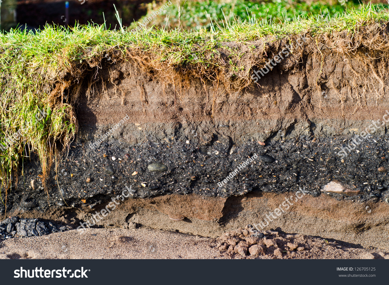 Coal shale layer in soil profile stock photo 126705125 for What is soil