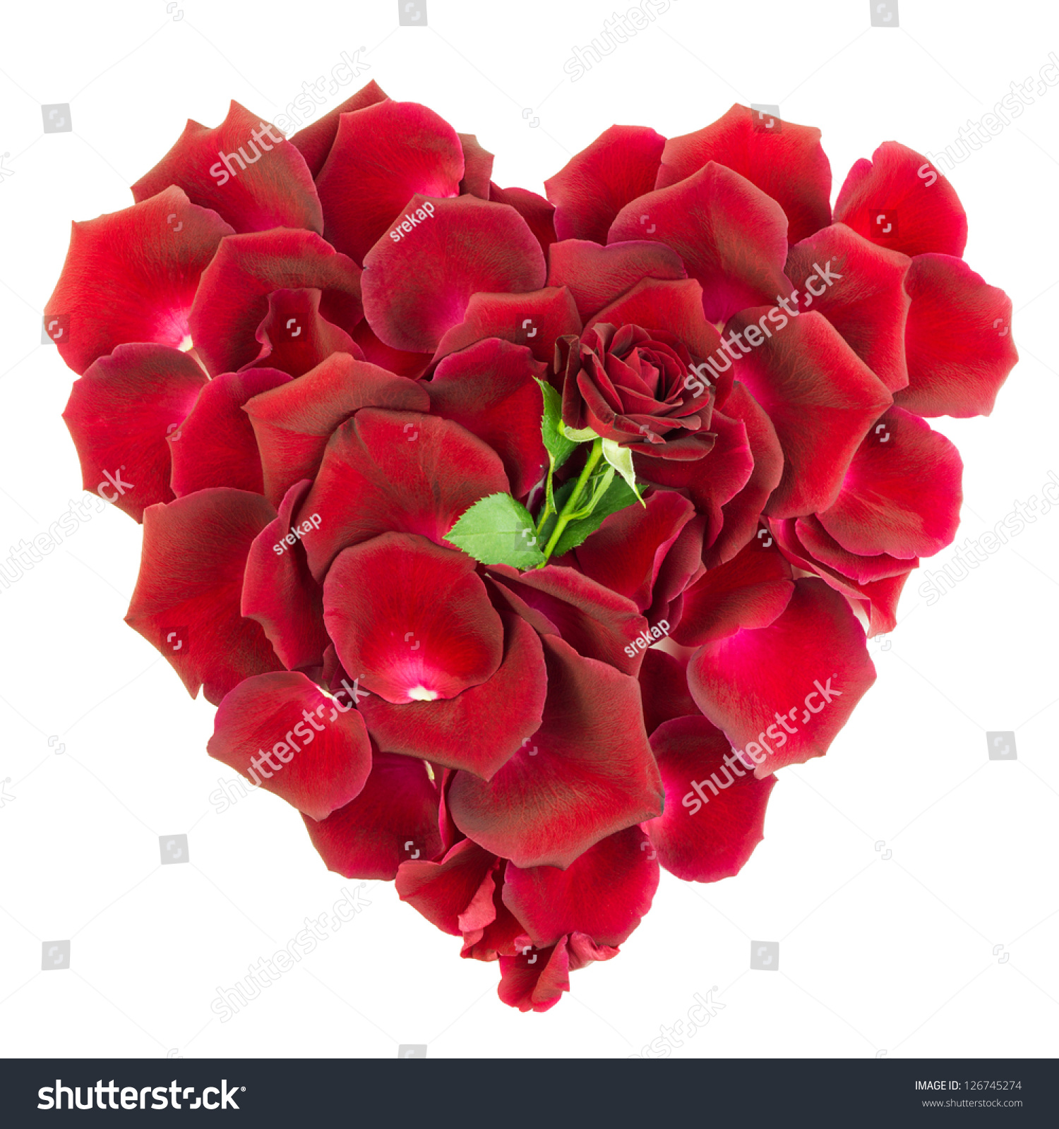 Love heart of red rose petals with single rose head stock for Individual rose petals