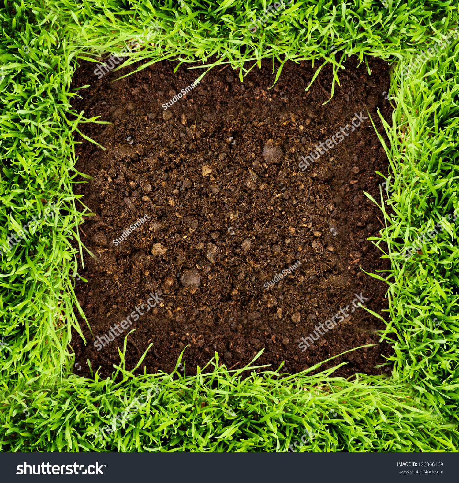 Green grass in soil stock photo 126868169 shutterstock for Soil and green