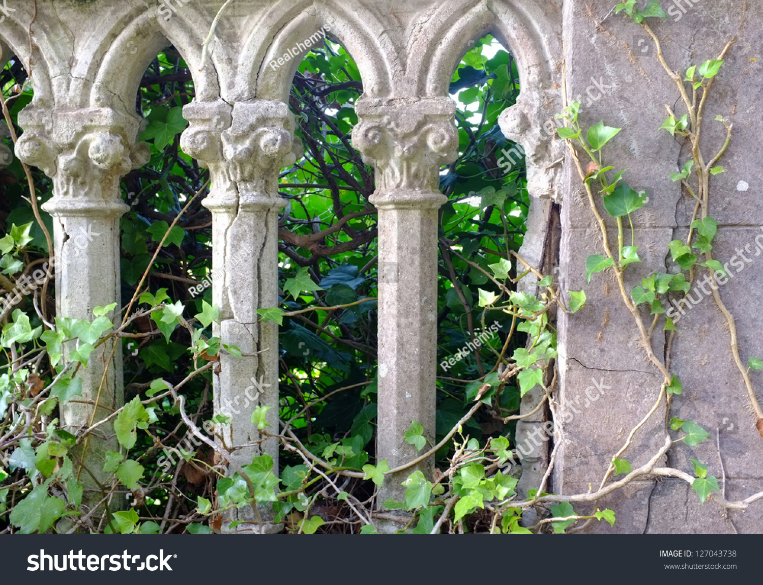Gray Pillars Green Ivy Old Italian Stock Photo 127043738