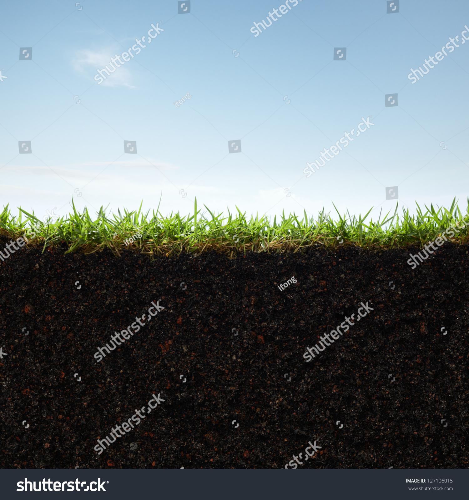Cross Section Grass Soil Against Blue Stock Photo