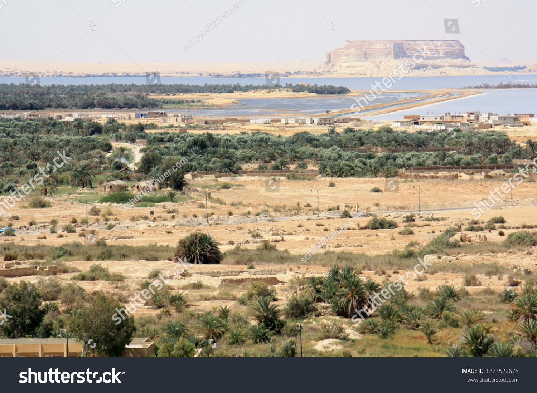 High Angle View Siwa Oasis Egypt Stock Photo (Edit Now