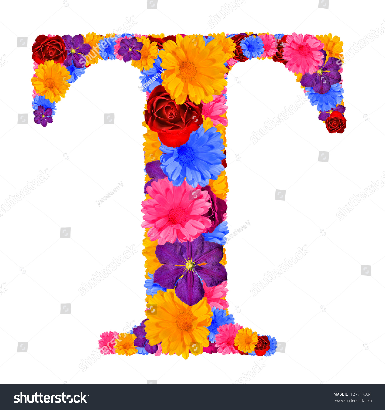 Pictures Of Flowers That Start With The Letter K