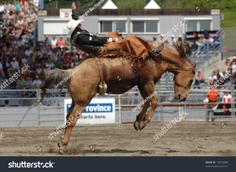 Rodeo Bareback Riding Stock Photo 12810448 Shutterstock