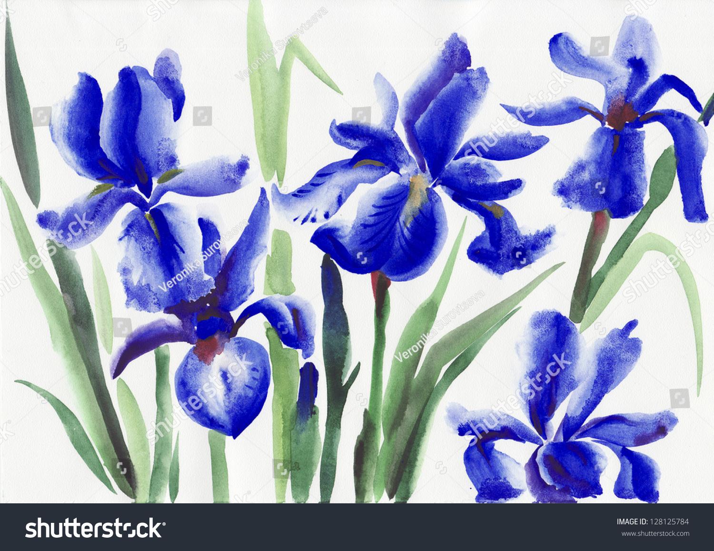 Blue Iris Flowers Original Watercolor Painting Stock Illustration