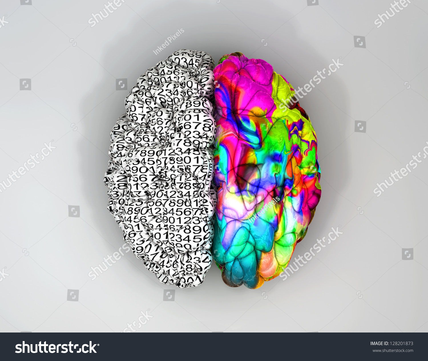 typical brain left side depicting analytical stock illustration a typical brain the left side depicting an analytical structured and logical mind