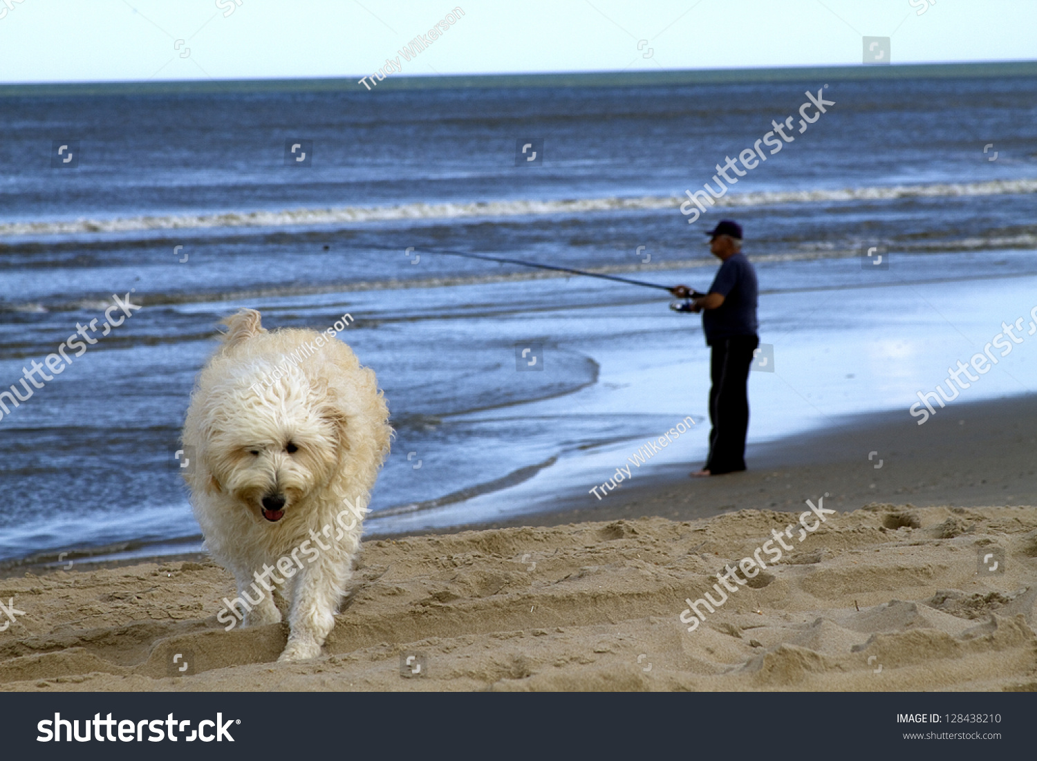 Man fishing at twilight with his dog in forefront walking for Do senior citizens need a fishing license