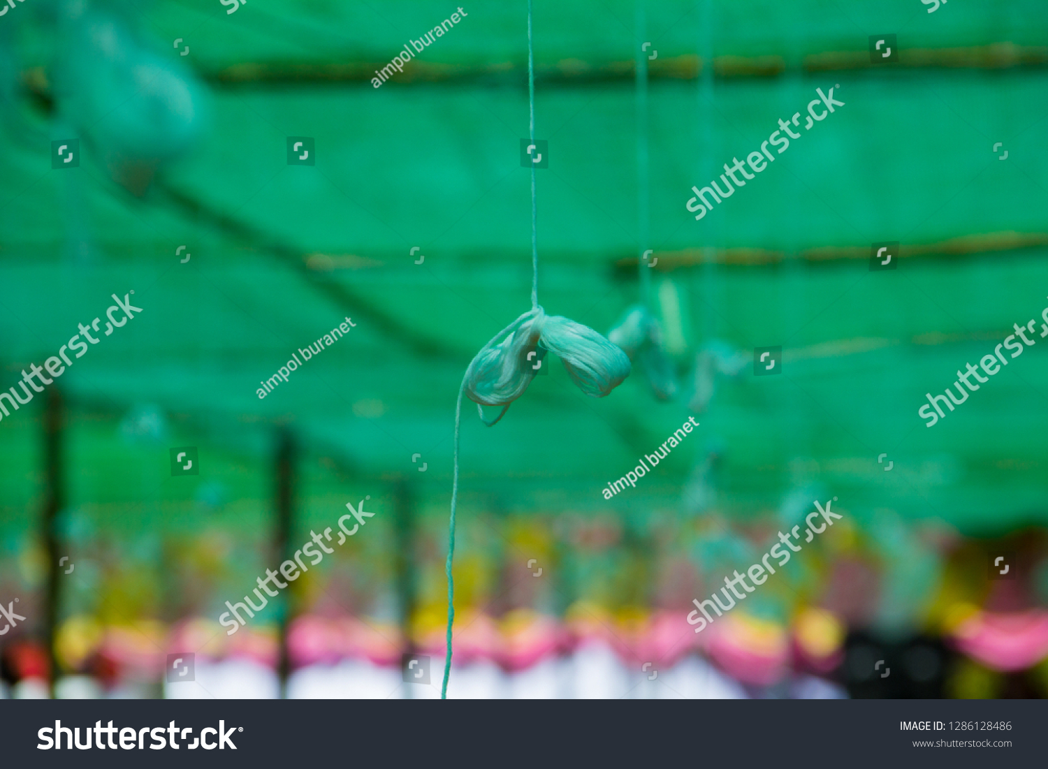 holy thread,holy thread and green background,holy thread in the temple. #1286128486