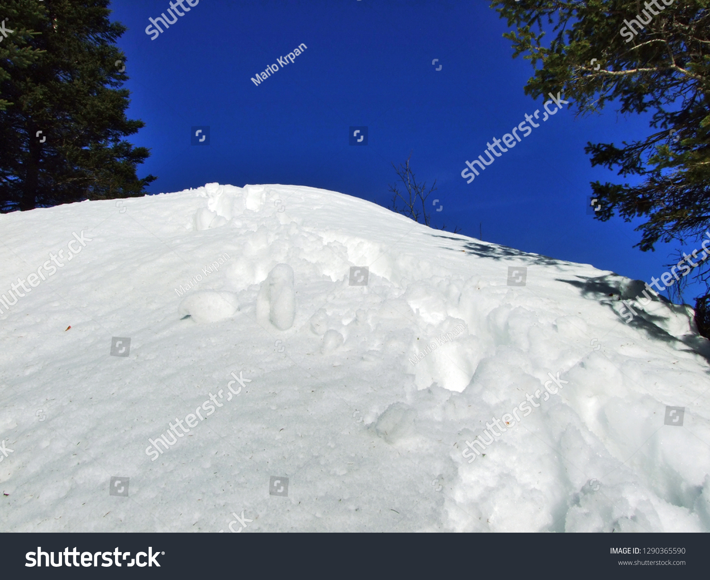 Winter Game Light Shadow Swiss Alps Stock Photo Edit Now