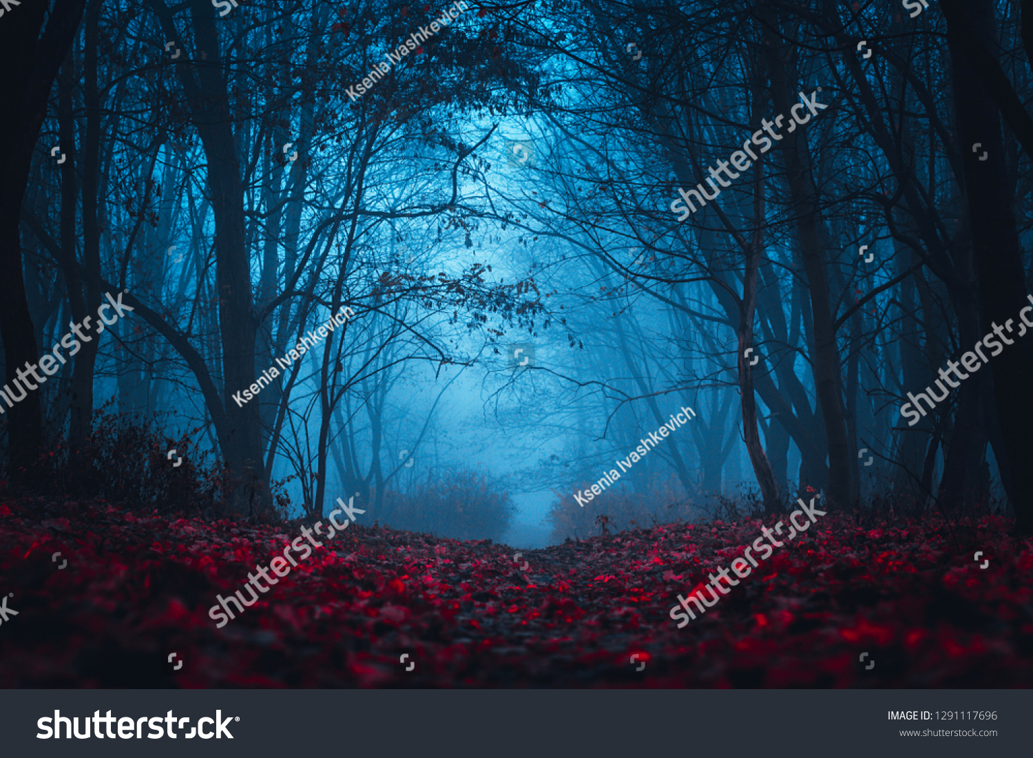 Fairy Mysterious Forest. Mystical atmosphere. Paranormal another world. Stranger forest in a fog. Dark scary park with red leaves. Background for wallpaper. #1291117696