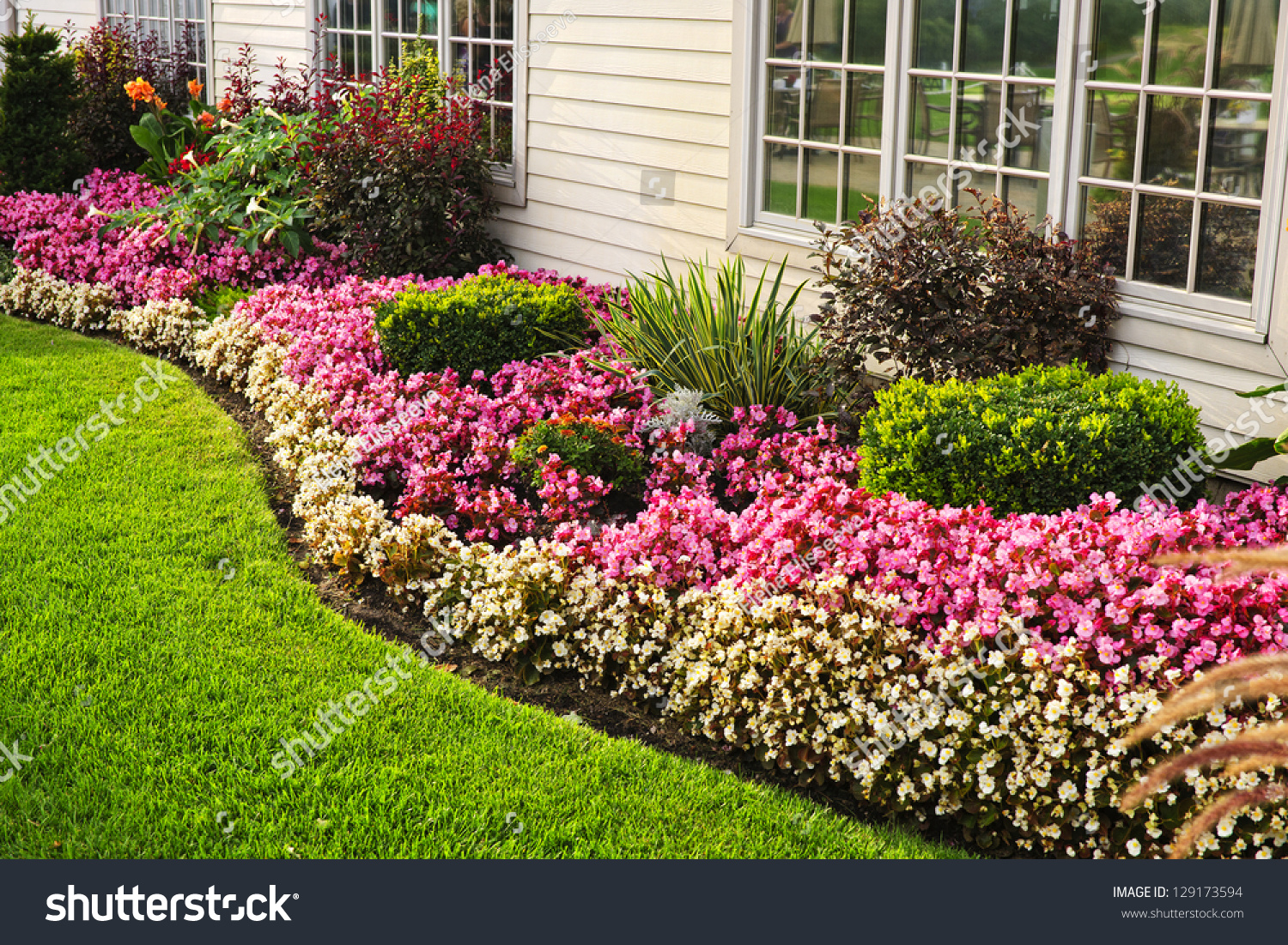 Flowerbed Of Colorful Flowers Against Wall With Windows Stock ...