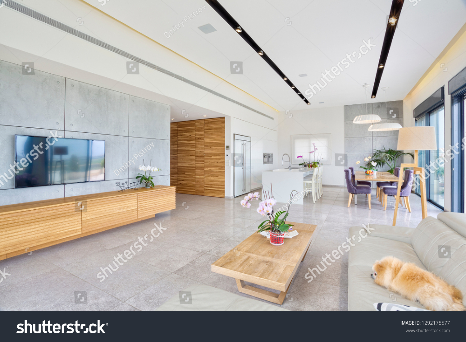 Luxury Modern Home Interior Design Living Stock Photo Edit Now 1292175577
