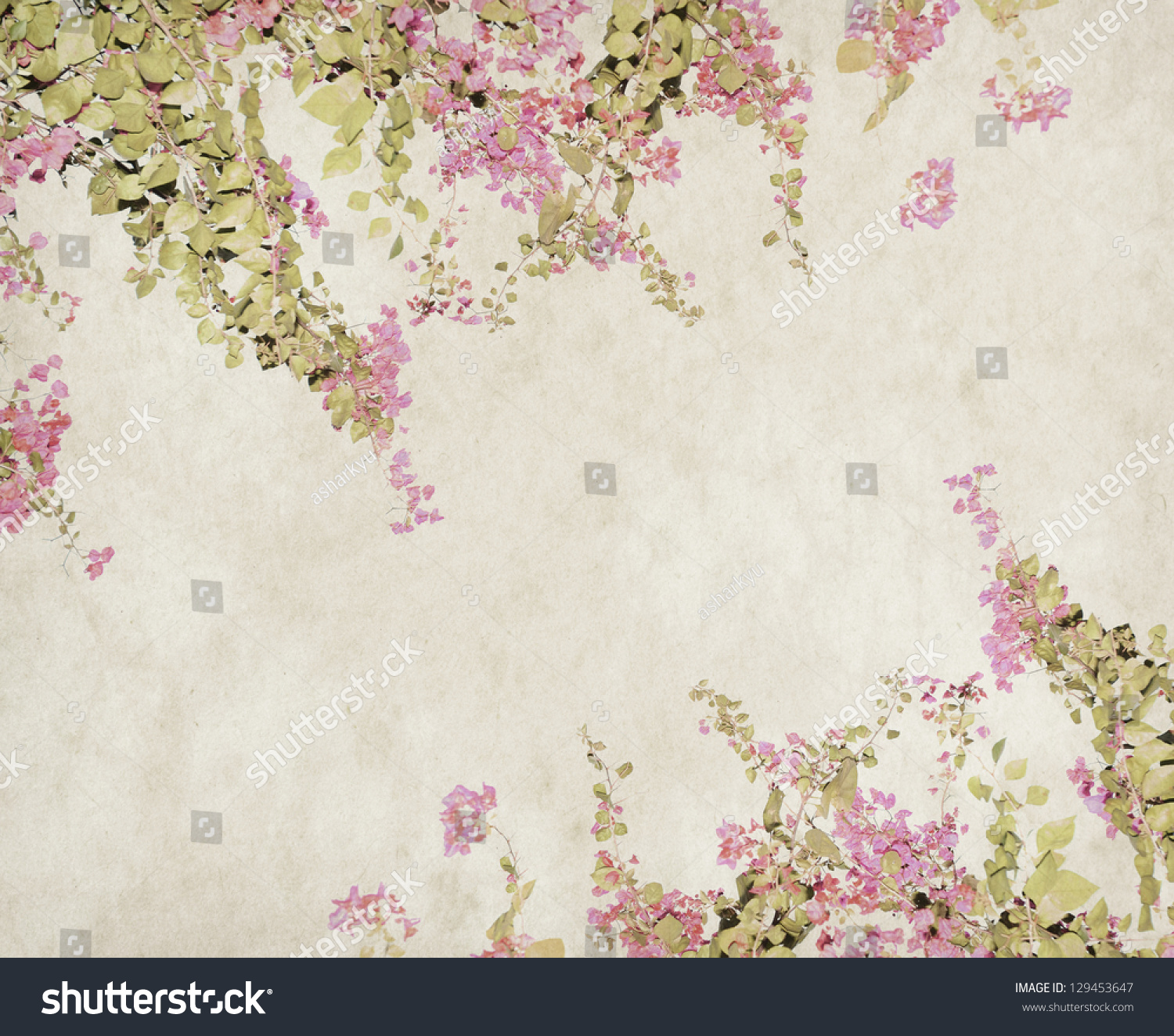 Flower Blossom On Old Antique Vintage Paper Background