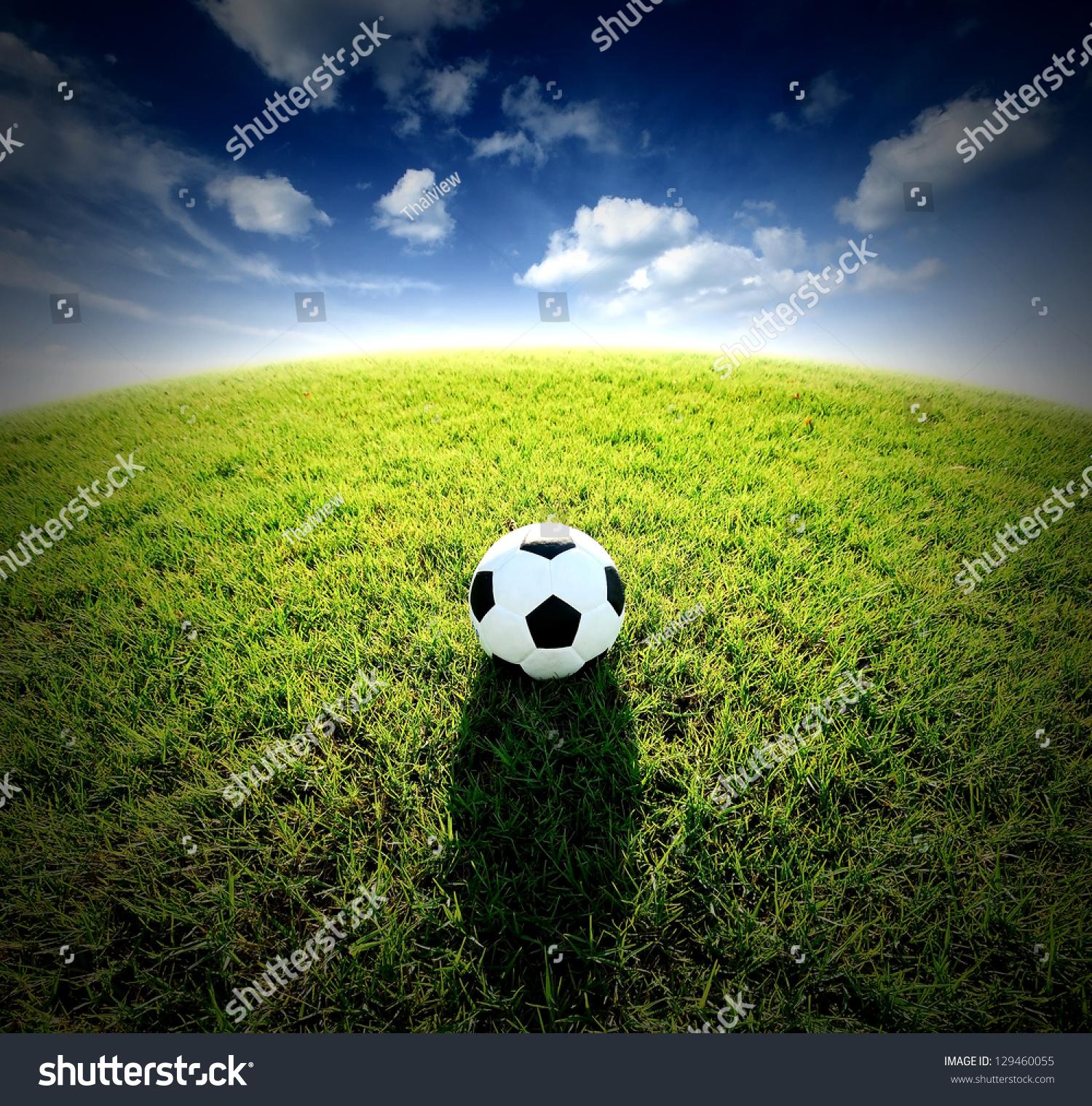 Football Field Soccer Stadium On Green Stock Photo