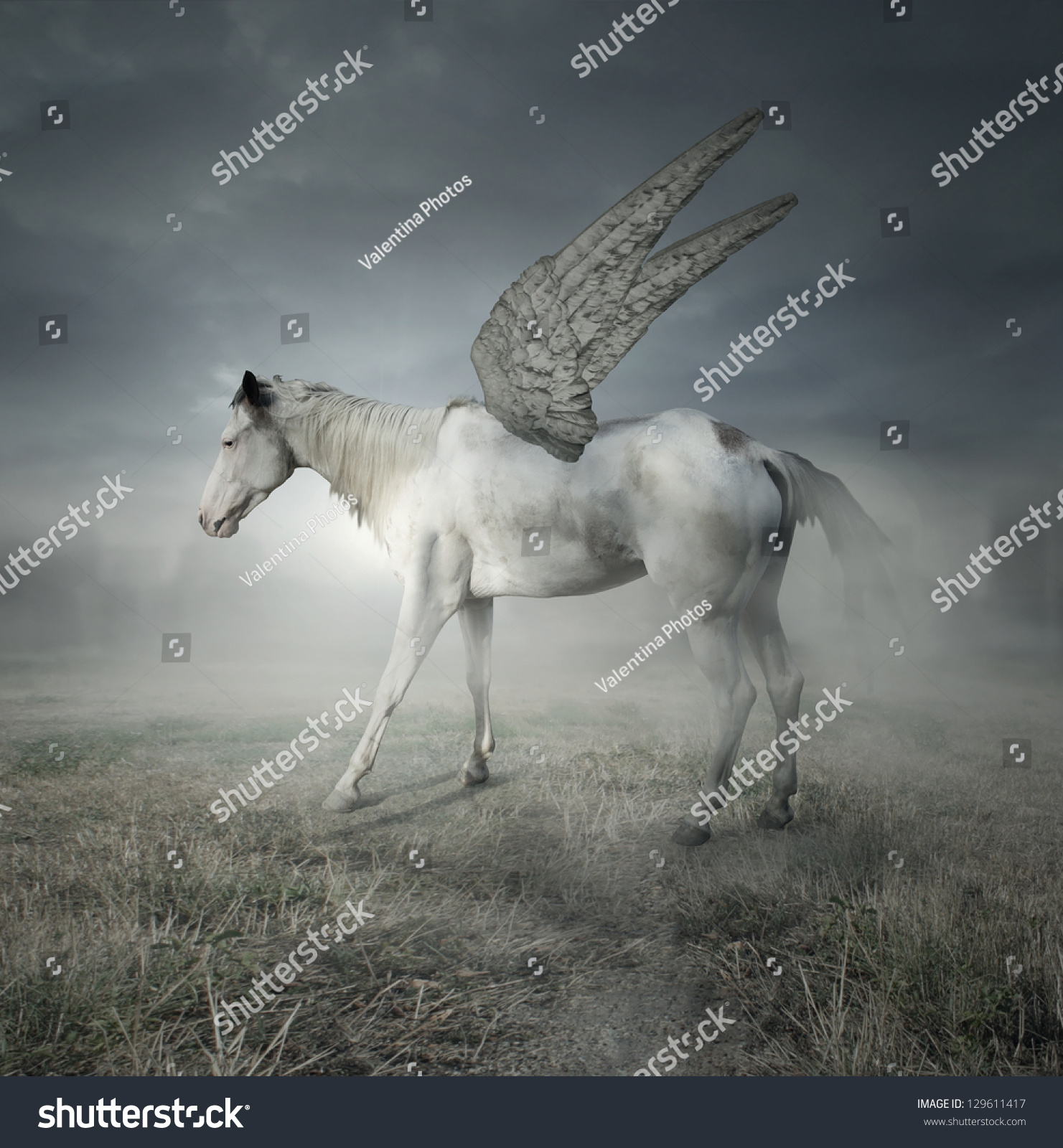 Fantasy Beautiful White Horse Wings Representing Stock Photo Edit Now 129611417